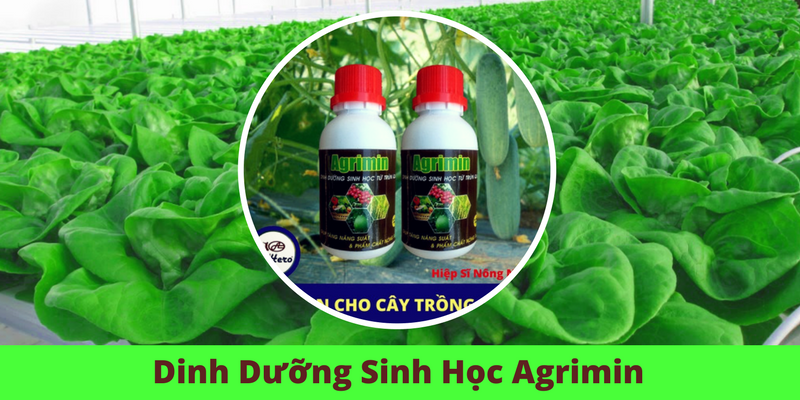 dinh-duong-sinh-hoc-agrimin